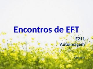 eEFT-e211 - autoimagem.pptx