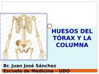 1-CURSO- HUESOS DEL TORAX Y LA COLUMNA.ppt
